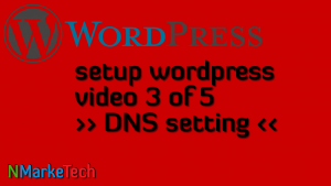 setup_wordpress_dns